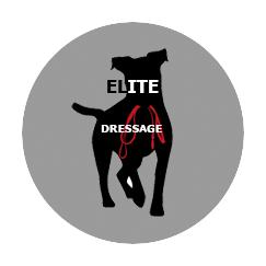 Dressage chien Var - Educateur Comportementaliste canin dans le 83 La Garde -Toulon- Brignoles